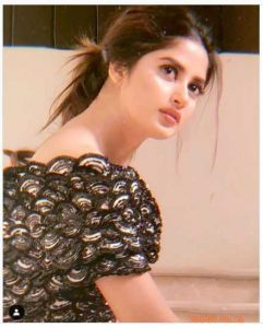 image 5 compressed 1 241x300 - Sajal Ali Biography, sister, age, husband, family pictures