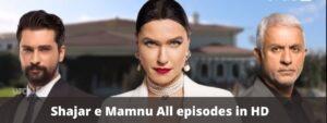 Shajar e Mamnu Episode 30 Forbidden Fruit Urdu Dubbing