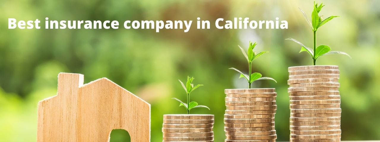 You are currently viewing Best insurance company in California