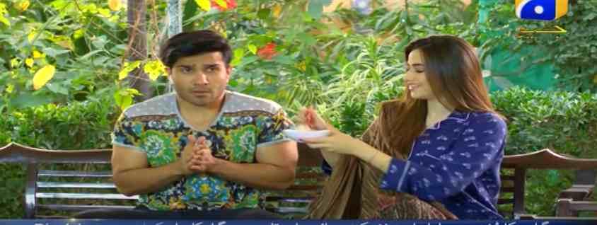 Remeo weds heer compressed - Feroze Khan Dramas list - Top Ten dramas of Feroze khan